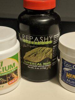bearded dragon supplements